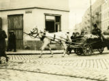 Poland, horse pulling hay wagon on busy street