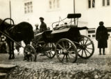 Belarus, private carriage at market