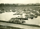 Poland, pine log rafts in river