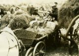 Belarus, bark and hay in market wagon