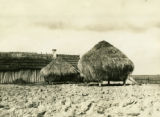 Belarus, two stacks of rye straw in front of barn