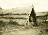 Belarus, long thatched shed