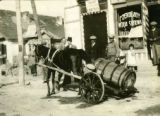 Poland, horse pulling barrel in cart