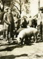 Ukraine, people standing with hogs at market