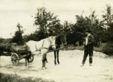 Ukraine, man standing with horses and cart