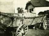 Ukraine, covered cart
