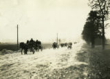Poland, many horse drawn wagons on dirt road