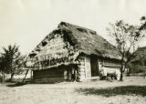 Poland, children standing next to shed under thatched roof overhang