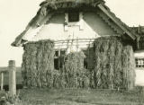 Ukraine, hay stacked against the house