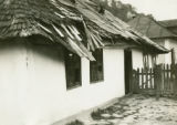 Ukraine, white plastered house with low shingled roof