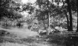 United States, around fire at Platt's camp in Prairie du Sac