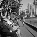United States, line of men sitting on benches in Los Angeles