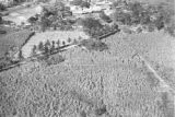 El Salvador, aerial view of sugar mill