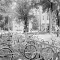United States, bicycles at school in Lake Geneva