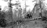 United States, crane at logging camp on Michigan's Upper Peninsula
