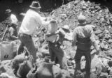 Mexico, men loading rocks into sacks