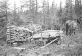 Canada, logs of pulp wood on sledge at logging camp south of Cochrane