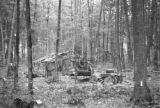 United States, maple sugar camp in Vilas county