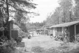 United States, C.M. Christiansen Company logging camp near Nelma