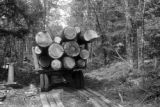 United States, log truck at William Bonifas Lumber camp in Upper Peninsula
