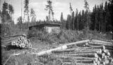 United States, cut logs and shack in Marquette County
