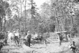 United States, men working at C.M. Christiansen logging camp near Nelma