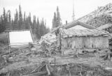 Canada, pulp wood pile and shack at logging camp in Ontario Province