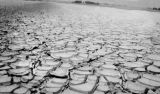 Modoc County (California), mud cracks in Alkali Lake east of Cedarville