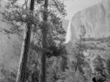 Western United States, trees and mountain with waterfall