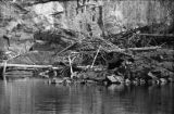Ontario, old beaver dam on Upper Black River