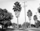 San Marino (California), street view near home of C.B. Clapp