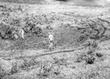 San Pedro Carchá (Guatemala), men collect samples near airfield terrace