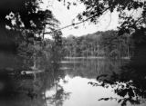 Florida, Ocklawaha River and banks