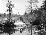 Florida, creek