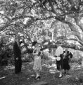 Capitola (California), people near oak trees
