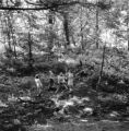 White Plains (New York), children in the woods near the Saxon Gardens