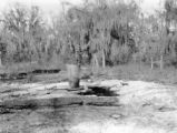 Sumter County (Florida), abandoned oil well test site