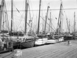 Tarpon Springs (Florida), boats in harbor