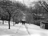 Bronxville (New York), Priscilla Clapp and friend on snowy walk