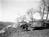 Muskingum County (Ohio), horse on rocky hilltop near Black Run