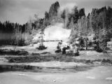 Wyoming, mud volcano in Yellowstone Park