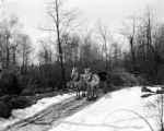 Clover Run (Pennsylvania), horse-drawn carriage