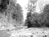 Cambria County (Pennsylvania), rocky streambed of Little Yellow Creek