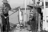 Canada, fishermen with fish on boat in Vancouver