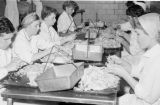 Canada, people working at meat processing factory in Winnipeg