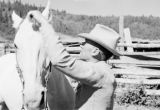 Canada, man saddling horse in Calgary