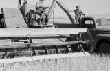 Canada, combine in wheat field in Saskatchewan