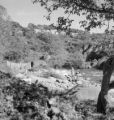 Mexico, women cleaning laundry in stream in Veracruz