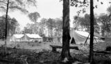 United States, logging summer camp on upper peninsula of Michigan