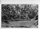 Papua New Guinea, three men stand on log